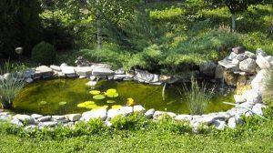 Natura, sursa de inspiratie pentru amenajari gradini